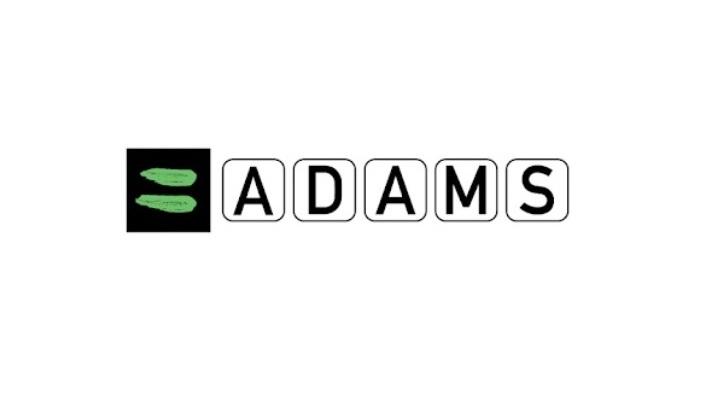 Внимание! Информация о системе ADAMS